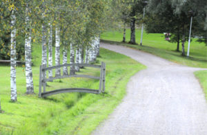 Velskolan kartanoalue on puistomainen.
